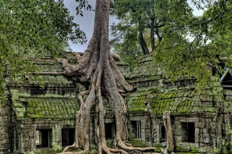 Tour of Cambodia: Angkor and Siem Reap 4 Days / 3 Nights