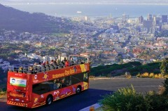 Cape Town City Sightseeing Tour 1 Day