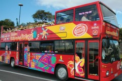 Funchal City Sightseeing Tour Red Line 24 hours