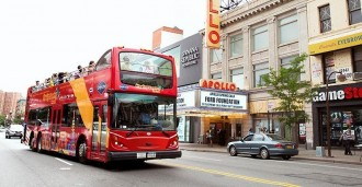 New York City Sightseeing All Around Town Tour 72 hours