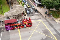 Singapore City Sightseeing Tour 24 ore