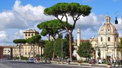 Tour Essential Food and Wine from Rome to Florence - 5 days / 4 nights