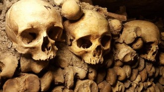 Private City Tour of Rome Catacombs - Half Day