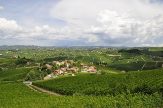 Turin and Langhe Wine Valley from Milan
