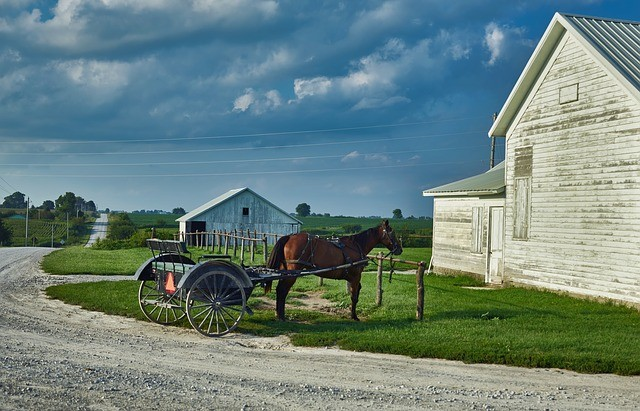 1 Day tour to Philadelphia and the Amish Country