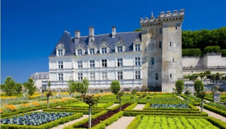 2 Day Guided Trip to the Loire Valley Castles from Paris