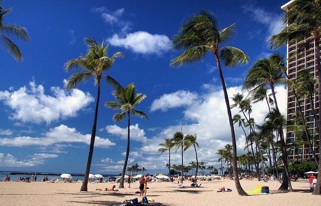 Go Oahu Card 4 Days - SellingTrip com