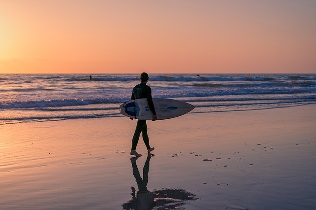 1 Day Tour to San Diego and La Jolla from Los Angeles
