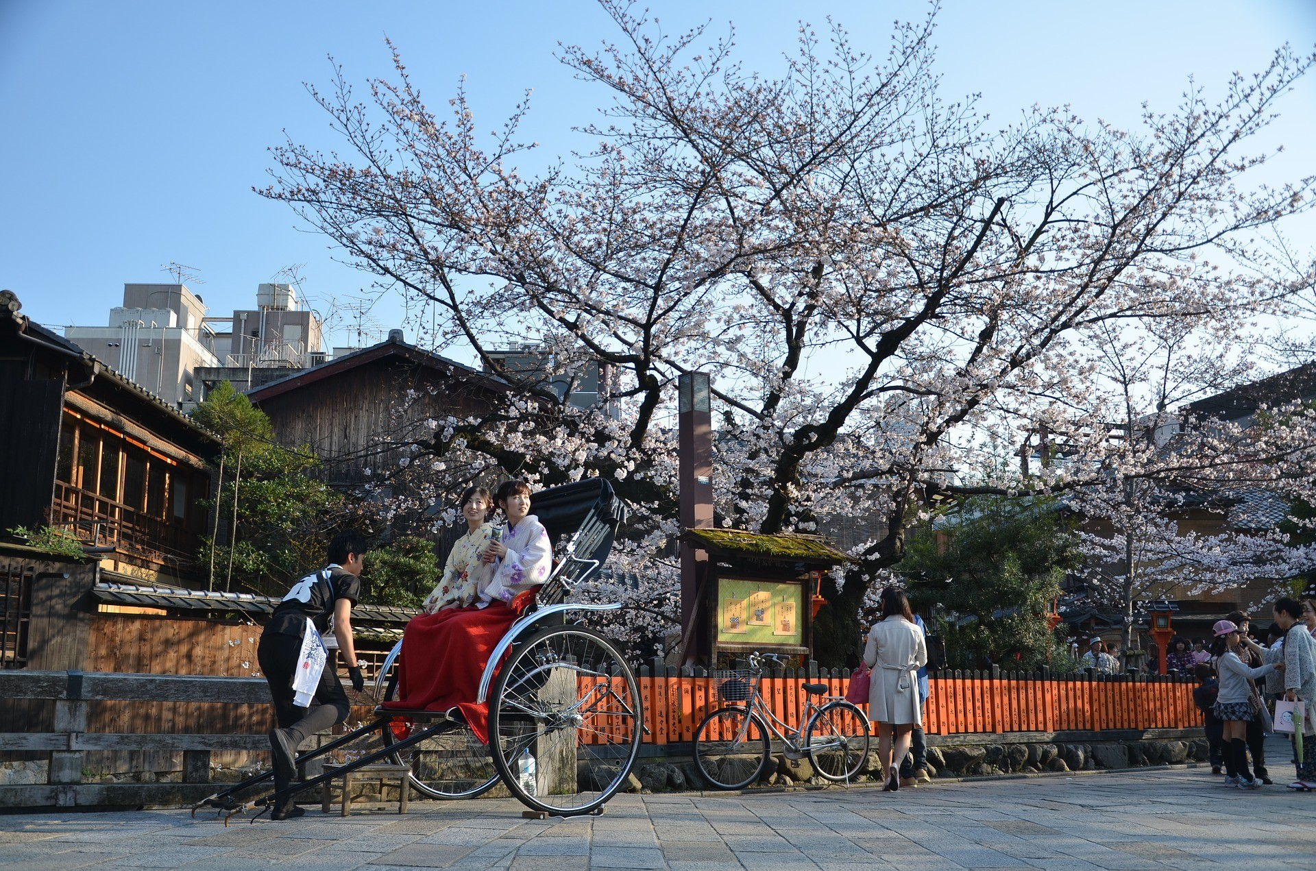 KYOTO AND THE CHERRY BLOSSOM SEASON
